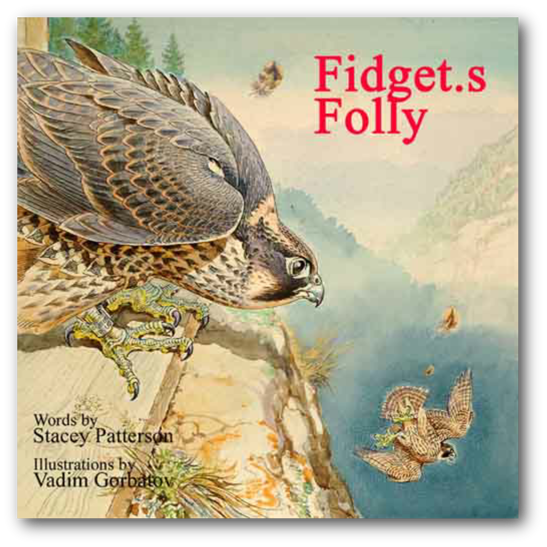 book fidgets folly cover